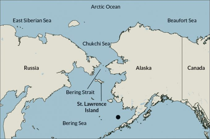 030219_arctic-sea_inline_1_map_730.jpg