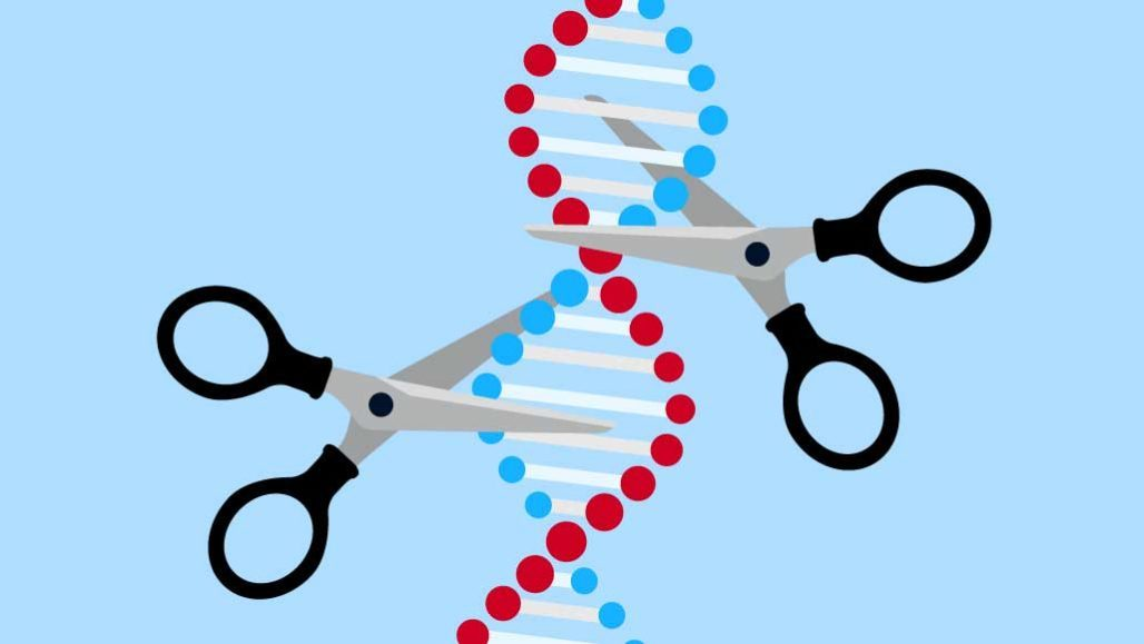 Global Molecular Scissors Technology Market 2020 Analysis, Types,  Applications, Forecast and COVID-19 Impact Analysis 2025 – Owned