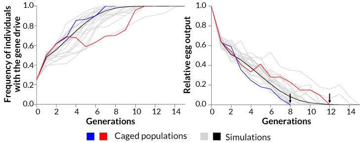 092118_TI_gene-drive-population_inline_2_730.png