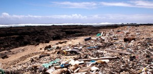 The ocean dumps literally tons of plastic trash on Hawaii's Kamilo Beach each year. Credit: Amanda Rose Martinez