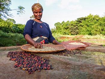 woman coffee beans