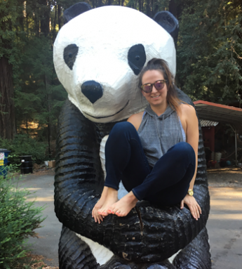 350-inline-4-emma-karey-giant-panda-redwoods.png