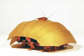350_CRAM_robot_cockroach.png