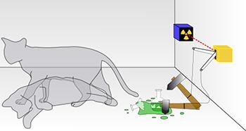 350_Schrodingers_cat.png