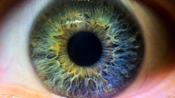 350_eye_iris_close_up.png
