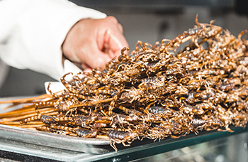 a pile of fried scorpions