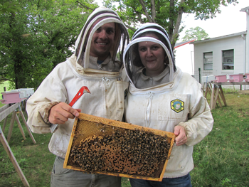 350_inline_CJ_Bees_Bernardo-and-Elina.png