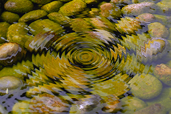 350_pond_ripples.png
