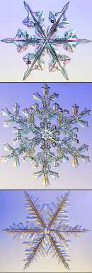 370_3_snowflakes_composite.png