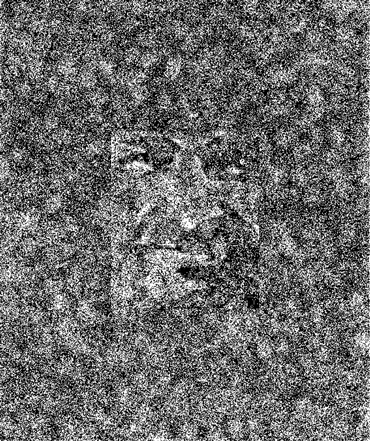 a face that hidden in a busy black and white image