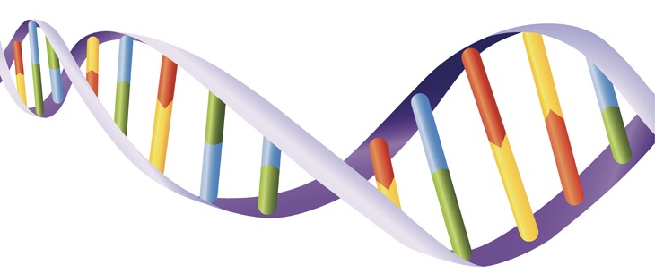 730_DNA_helix.png
