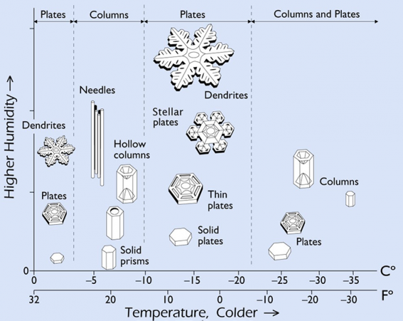 730_Snowflake_Morphology_rev.png