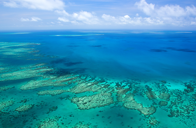 730_great_barrier_reef.png