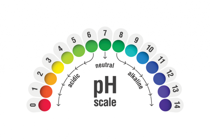730_pH-scale.png