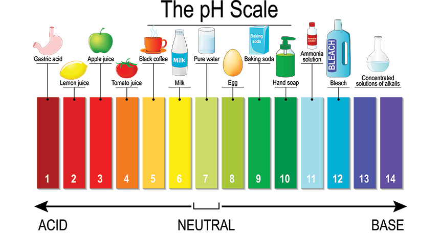 Scientists Say: pH | Science News for Students