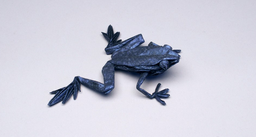 Origami Frogs Tutorial - Origami for Kids - Easy Peasy and Fun | 460x860