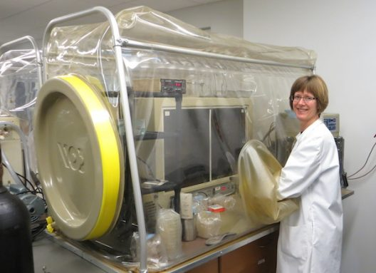 ary Hagen studies soil microbes