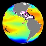 Blue patches indicate parts of the ocean that are more acidic than the yellow and red areas. Stars show coral reefs, which can lose their skeletons in more acidic water.