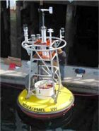 A buoy such as this one can carry equipment for directly measuring the pH of ocean water.