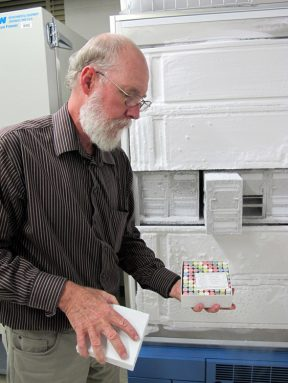 Texas Tech University biologist Robert Bradley pulls from the freezer tissue samples from rodents collected over five decades. Each color-coded tube represents a different organ. Orange is spleen, green is liver, white is lung, red is heart and kidney, and yellow is muscle. Credit: Sharon Oosthoek