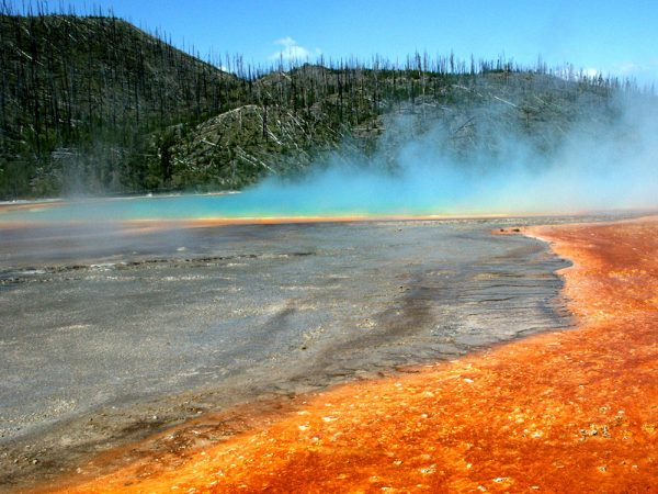 The volcanic hot springs at Yellowstone National Park aren't just colorful — they are also home to many species of archaea. Credit: Susan Kelly/Montana St. Univ.