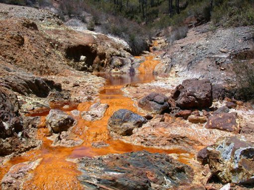 An acid-rich spring gurgling up from the ground in Iron Mountain, Spain. The red color comes from iron dissolved in the water. Such high-acid environments are challenging to most living things, but some archaea thrive in them. Credit: Carol Stoker (NASA Ames Research Center)