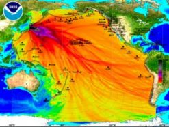 This is a view of the Pacific Ocean, where different colors indicate the height of the tsunami in that area. The highest waves, in black, were probably more than eight feet tall. The orange and red areas indicate areas where the wave was closer to eight inches.