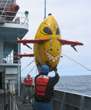 sentry diving