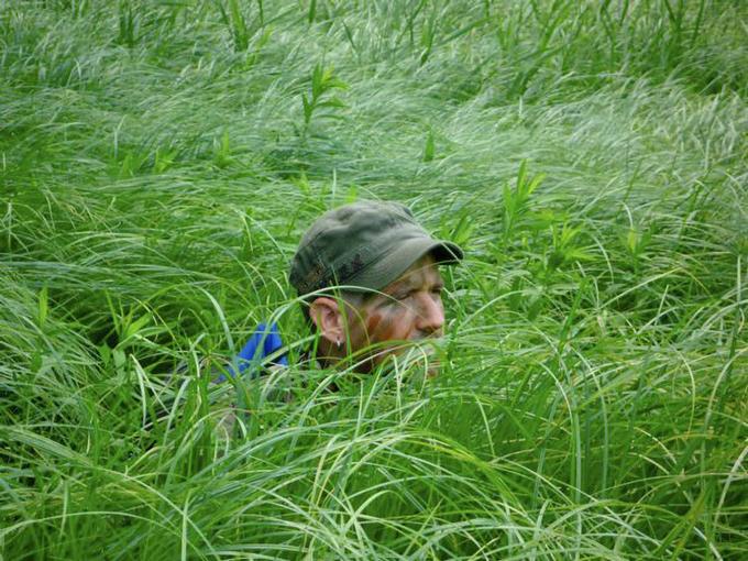 Burgio camouflaged