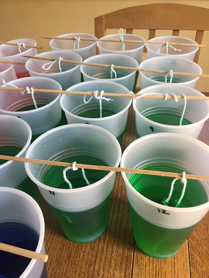 strings hanging into cups with sugar solution