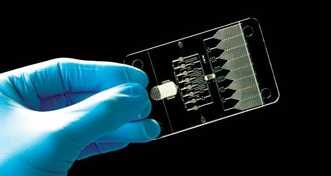 1Drop Diagnostics chip