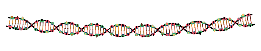 illustration of a strand of DNA