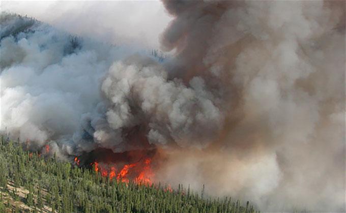 a photo of an Alaskan wildfire