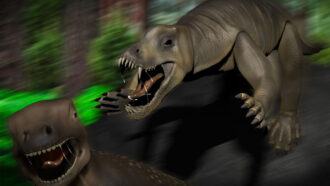 An ancient hippo-sized reptile may have been a speedy beast