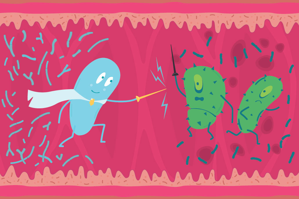 a cartoon illustration of good and bad bacteria