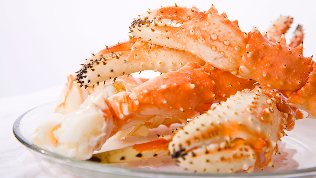 Bandages made from crab shells speed healing