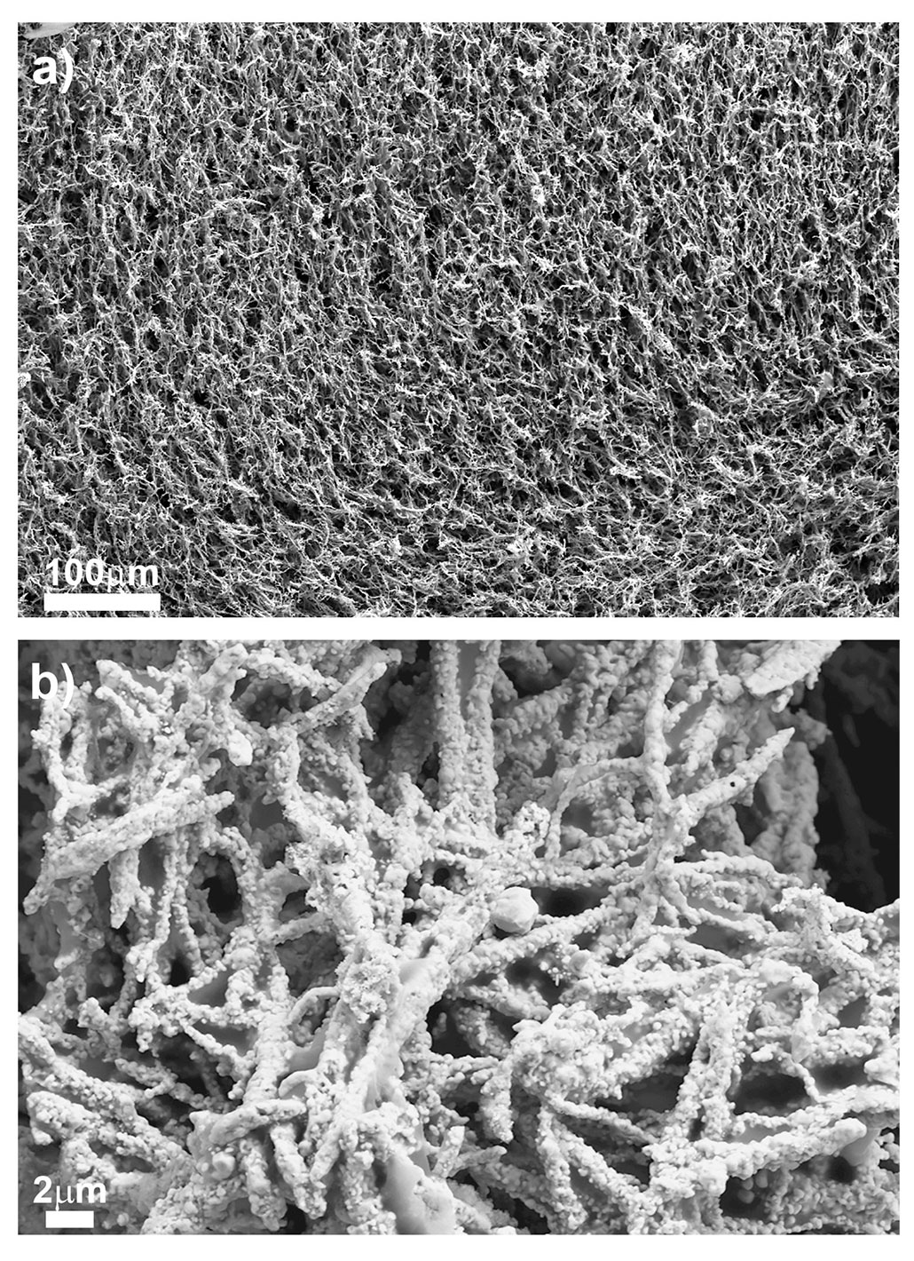 microscopic images of copper foam