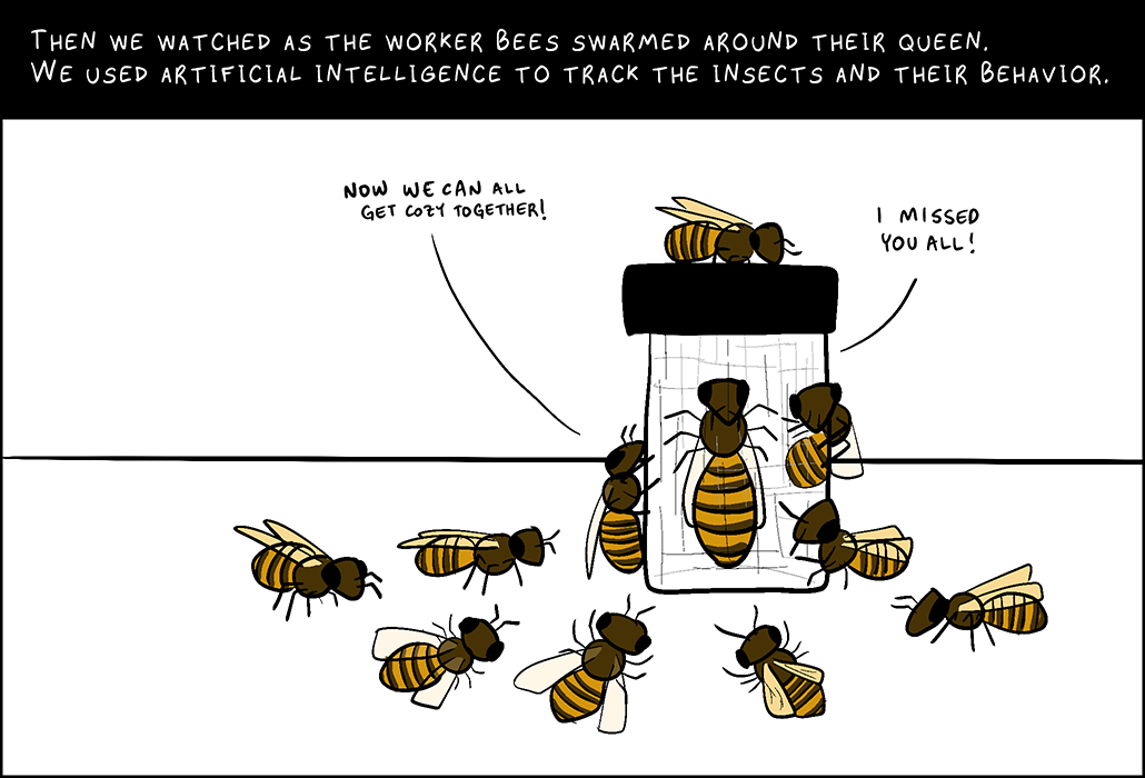 Panel 4: Then we watched as the worker bees swarmed around their queen. We used artificial intelligence to track the insects and their behavior. Worker bee: Now we can all get cozy together. Queen bee: I missed you all.