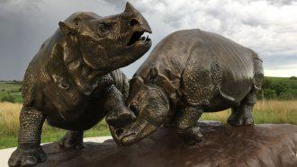 Rhinos, camels and bone-crushing dogs once roamed Nebraska
