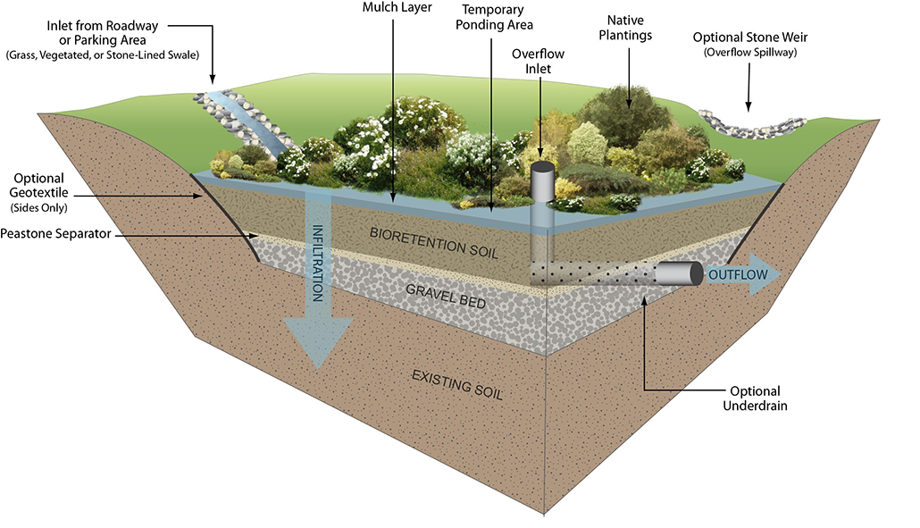 a diagram showing the layers of soil and gravel used to filter water in rain gardens