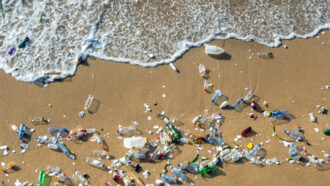 Tiny swimming robots may help clean up a microplastics mess