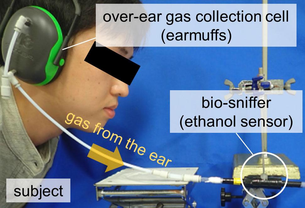Someone demonstrates wearing gas-detecting earmuffs
