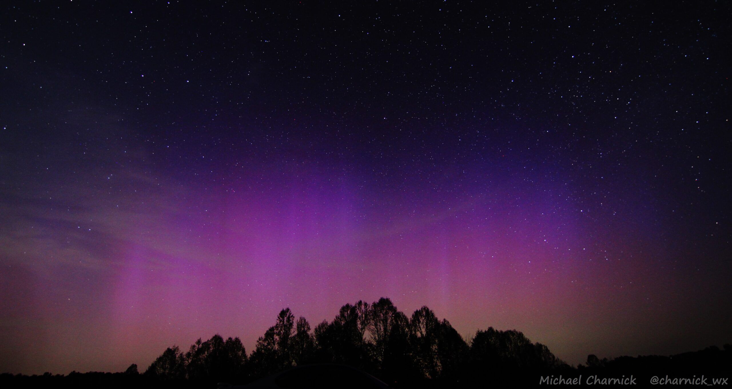 a pink and purple aurora shines in the night sky over a dark silhouette of trees